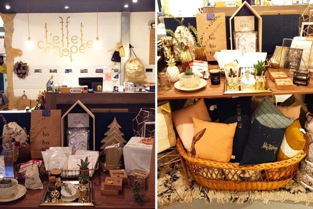 Intérieur de la boutique L'effet Canopée à Lyon